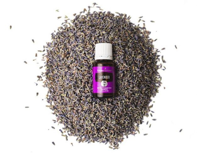What are Essential Oils