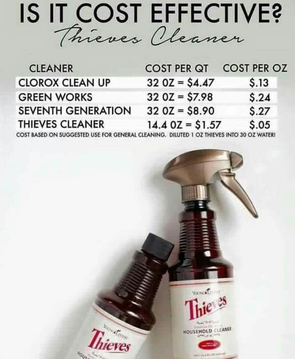 Save Money & Clean Safely