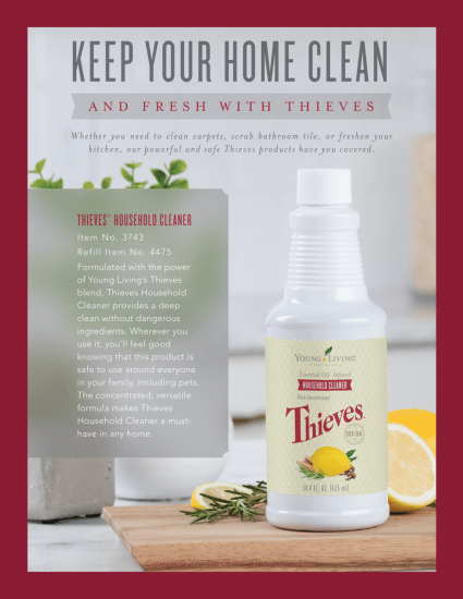 Oven Cleaners Stink Essential Peace Of Mind