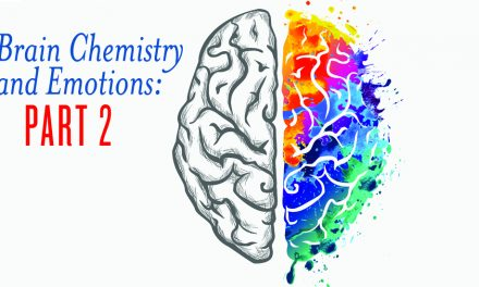 Brain Chemistry and Emotions Part 2. Can Essential Oils help ? I think so!