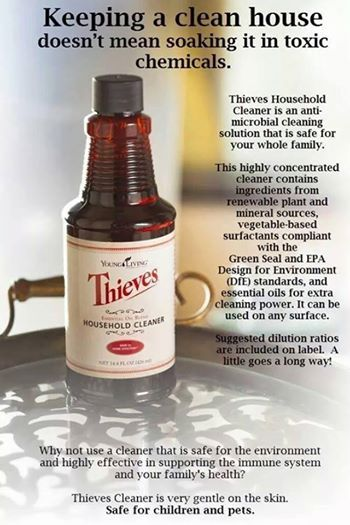 3 great recipes to use with Thieves Cleaner
