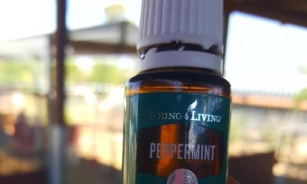 Just know Spiders Hate Peppermint Essential Oil!