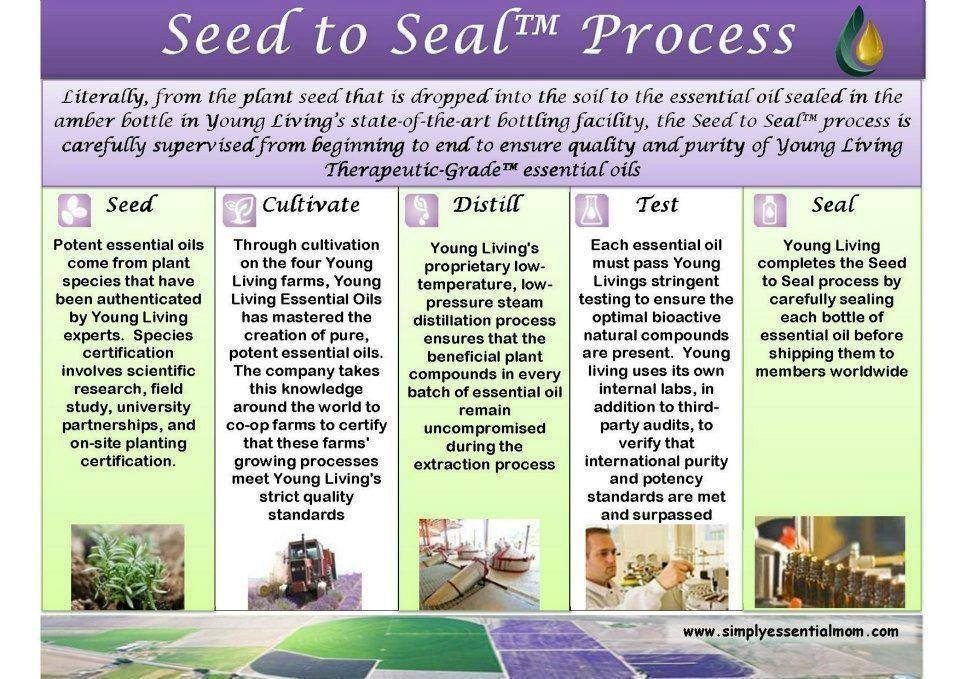 seed to seal new image