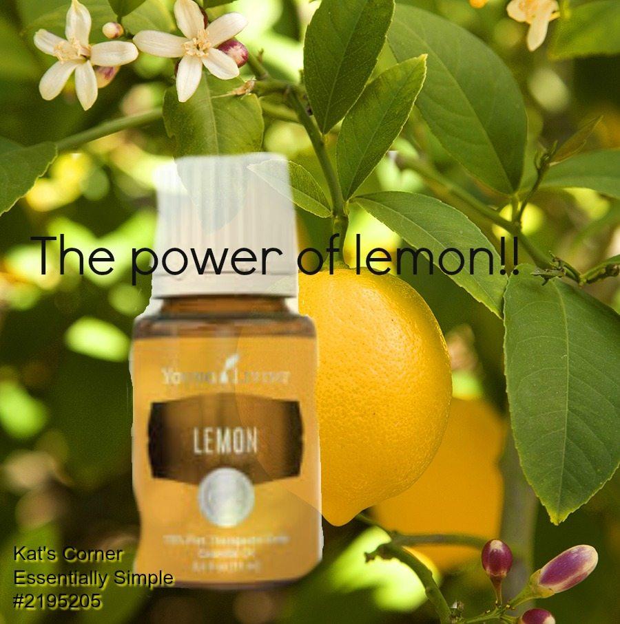 lemon and lemon tree graphic