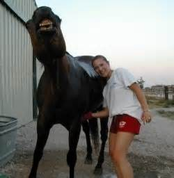 funny equine massage