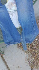 lias-clean-jeans-2
