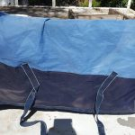 horse-blanket-4
