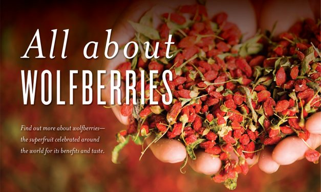 All About Wolfberries